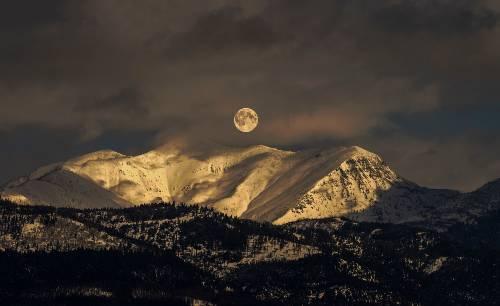 Montana USA Joe Wilkins Nella terra dei lupi